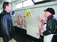 """Fermierii autohtoni vând carnea de miel """"ecologic"""" cu 20 lei kilogramul"""