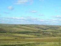 Mii de hectare de terenuri arabile rămân necultivate