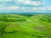 Agricultorii suceveni au început să-și cultive pârloagele