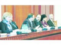 Tema: bugetul și alegerile