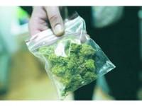 Hașiș și marijuana în Vama Siret