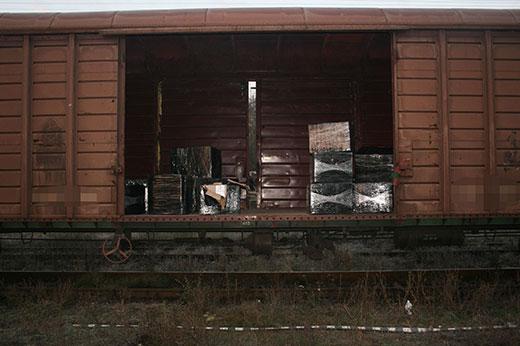 tigari tren